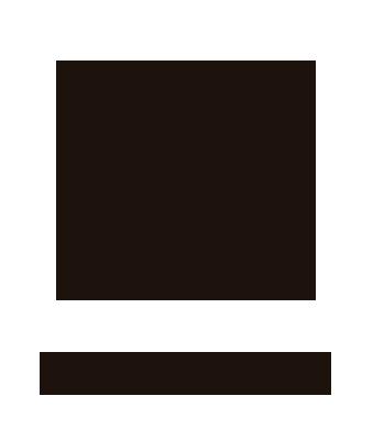 Web Castell